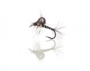 Musca Hatching Midge A.Jensen #16