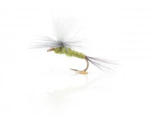Musca Bwo Parachute A.Jensen #14