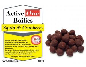 Boilies Active One Squid & Cranberry 1kg