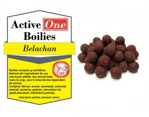 Boilies Active One Belachan 1kg