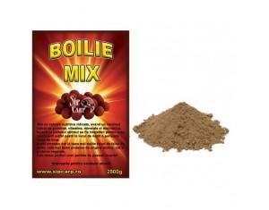 Boilie Mix RedSalmon&Fruit 1kg
