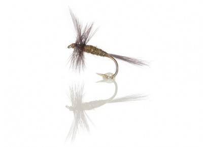 Musca Blue Winged Olive Bwo A.Jensen #14
