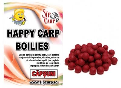 Boilies Happy Carp SipCarp Căpșuni